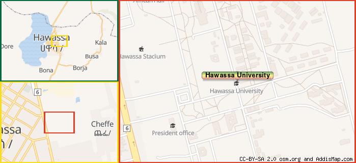 Hawassa University (University) (Addis Ababa, Ethiopia)